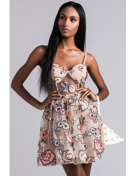 Garden Princess Embroidered Floral Mini Dress by Akira
