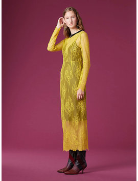 Long Sleeve Crew Neck Lace Dress by Dvf