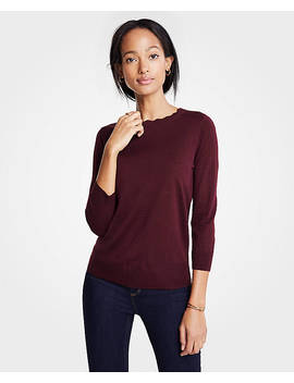 Scallop Crew Neck Sweater by Ann Taylor