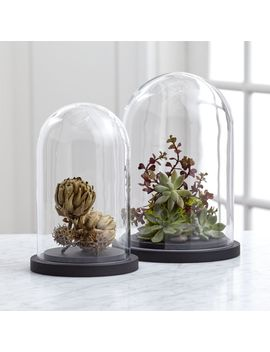 Cloches With Base by Crate&Barrel
