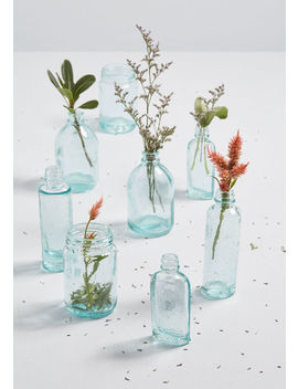 Varying Vessels Glass Vase Set by Modcloth