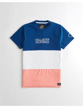 colorblock-embroidered-graphic-tee by hollister