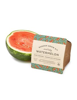 Baby Watermelon Grow Kit by Sarah Burrows And Nick Behr