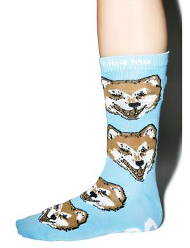 Shiba Inu Socks by Dog Ltd
