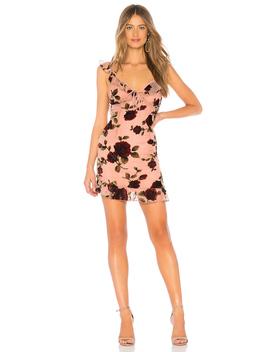 Adonia Mini Dress by About Us