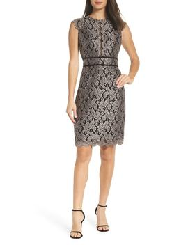 Scallop Detail Lace Dress by Morgan & Co.