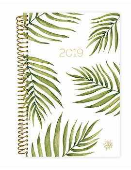 "Bloom Daily Planners 2019 Calendar Year Day Planner   Passion/Goal Organizer   Monthly And Weekly Dated Agenda Book   (January 2019   December 2019)   6"" X 8.25""   Palm Leaves by Bloom Daily Planners"