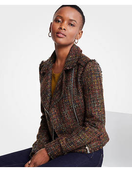 Fringe Tweed Moto Jacket by Ann Taylor