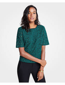 Petite Embroidered Lace Top by Ann Taylor