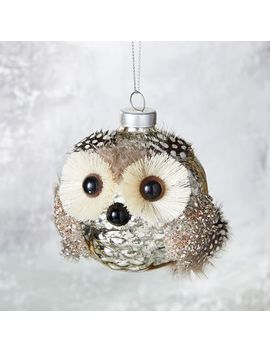 Owl Glass Ball Ornament by West Elm