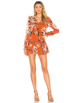 Lara Dress by Tularosa