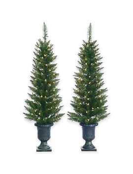4 Foot Artificial Cedar Pine Potted Pre Lit Trees (Set Of 2) by Bed Bath And Beyond