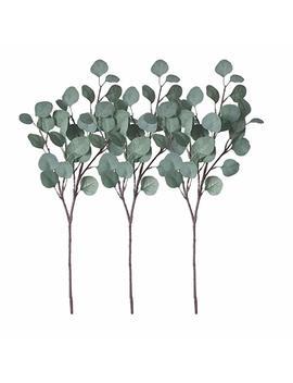 Zhiiha 3 Pcs Artificial Eucalyptus Garland Long Silver Dollar Leaves Foliage Plants Greenery Fake Plastic Branches Greens by Zhiiha