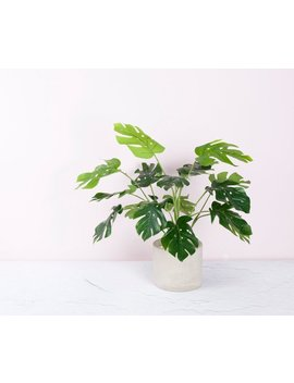 Artificial Monstera Bush For Centerpieces And Floral Arrangments / Faux Monstera Stem Leaves Plant by Rymds