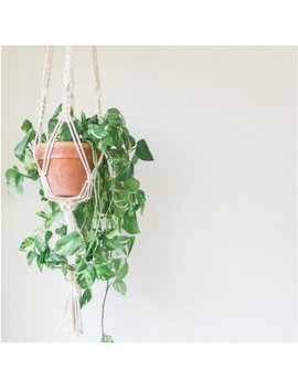 Cotton Macrame Plant Hanger   Hanging Planter by Sugarhouse Supply Co