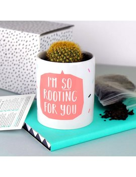 Funny Plant Pot   I'm So Rooting For You   Cactus   Succulent   Succulents   Cacti   Indoor Pot   Houseplant   Cactus Plant   Blush Pink by We Are Paper Plane