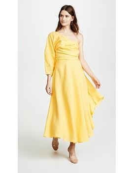 Tipple Dress by Rachel Comey