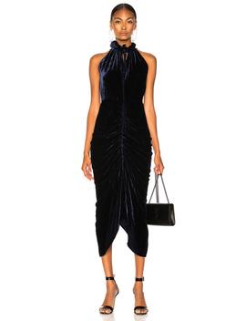 Hilo Dress by Magda Butrym