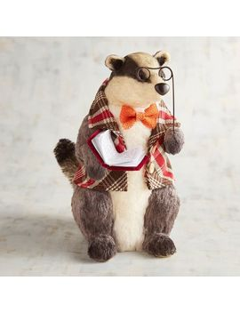 Sigmond The Natural Badger With Book by Grateful Harvest Collection