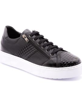 Justin Perforated Sneaker by Jared Lang
