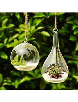 Siyaglass 2/Packing Hanging Terrarium Glass Vase Flower Plant Decoration  Orb And Teardrop by Siyaglass