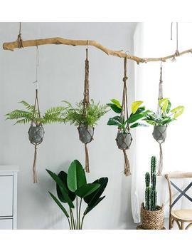 Simple Hanging Planter, Hanging Plant Holder, Macrame Plant Hanger, Succulent Planter,Fairy Garden,Diy Terrarium,Home Decor,Gift Idea by Jasmine Supply