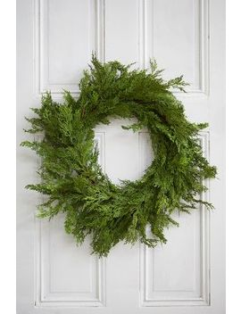 Faux Cedar Wreath by Anthropologie
