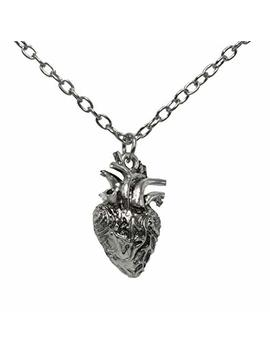 Anatomical Full 3 D Human Heart Necklace Anatomic Heart Pendant Nickel Free Alloy by Niche Finds