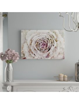 Willa Arlo Interiors 'winter New York Flower Floral And Botanical Art' Wrapped Canvas Print & Reviews by Willa Arlo Interiors