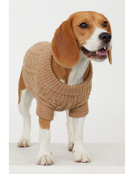 Cable Knit Dog Jumper by H&M