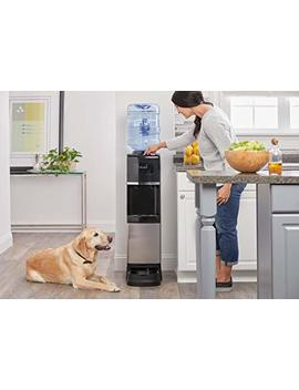 Primo® Water Cooler Dispenser + Pet Station by Primo