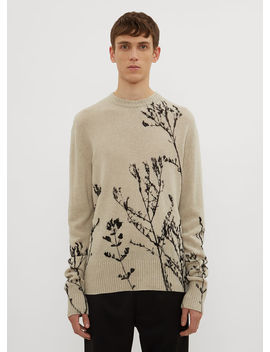 Grass Crew Neck Knit Sweater In Beige by Federico Curradi