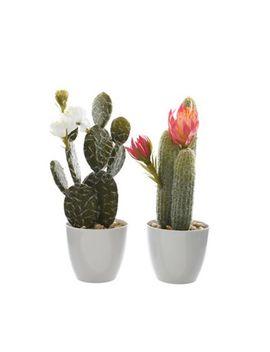 Kaemingk   Artificial Cactus In A Ceramic Pot by Kaemingk