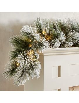 Led Pre Lit Flocked Faux Pine 9' Garland by Pier1 Imports