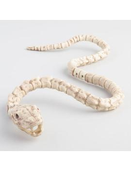 Snake Skeleton Decor by World Market