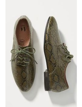 Vanessa Wu Embossed Oxfords by Vanessa Wu