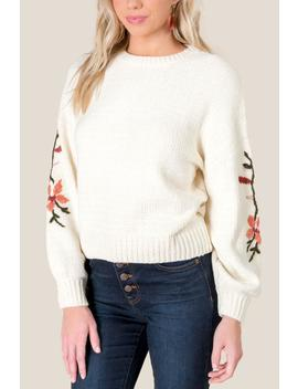Emory Embroidered Sleeve Sweater by Francesca's