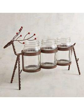 Reindeer Jar Caddy by Pier1 Imports