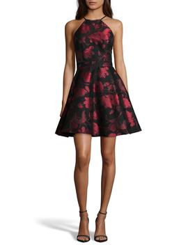 Halter Neck Brocade Fit And Flare Party Dress by Xscape