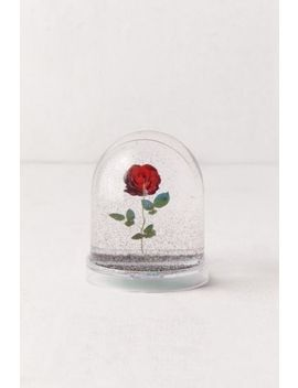 Rose Snow Globe by Urban Outfitters