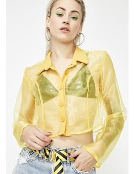 Spark It Up Sheer Crop Top by Topia