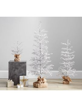 Pre Lit Snowy Crystal Trees by Pottery Barn