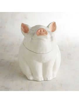 Hand Painted Pig Ceramic Cookie Jar&Nbsp; by Pier1 Imports