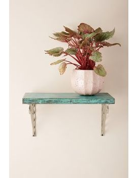 Patinaed Shelf by Anthropologie