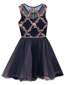 Big Girls Embroidered Fit & Flare Dress by Rare Editions