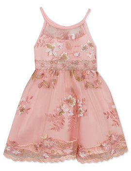 Toddler Girls Embroidered Illusion Neck Dress by Rare Editions