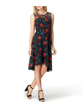 Petite Embroidered Mesh A Line Illusion Neck Sleeveless Hi Low Dress by Tahari Asl