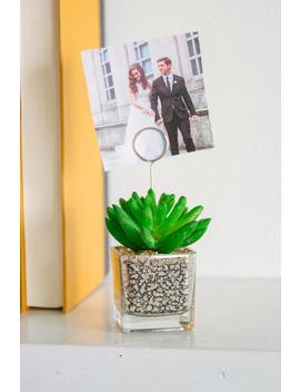 Mercury Succulent Photo Holder by Francesca's