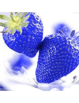 500 Pcs Blue Strawberry Rare Fruit Vegetable Seeds Magic Garden Bonsai Edible Climbing Plant by Newchic