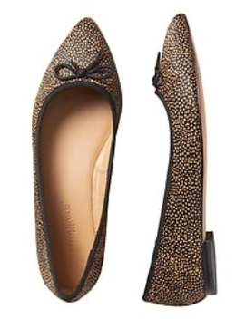 Pointed Toe Leopard Robin Ballet Flat by Banana Republic Factory